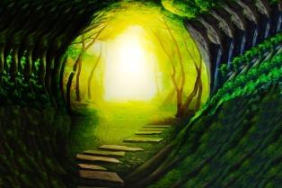 light forward